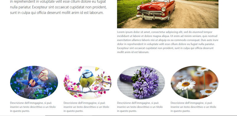 Bootstrap images